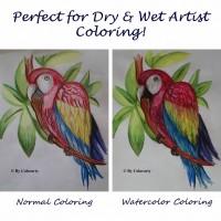 Normal color pencils Vs Colorarty's new watercolor pencils