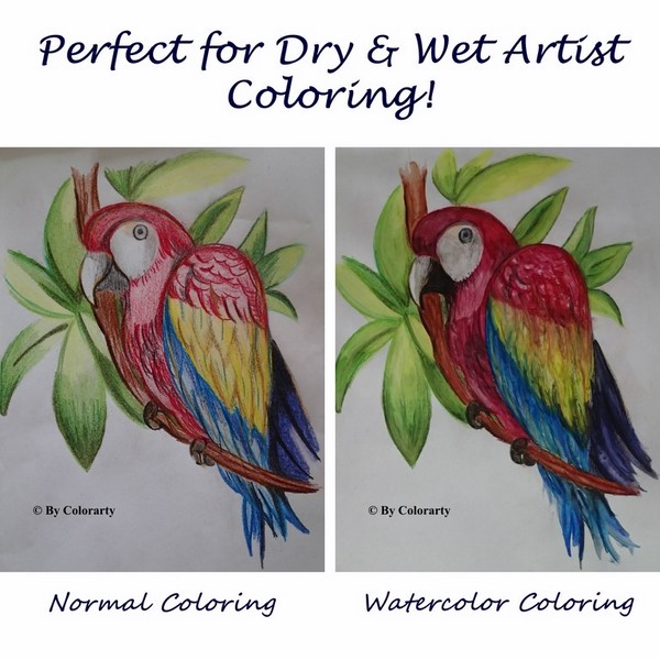 Dry vs wet coloring